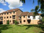 Thumbnail to rent in The Meadows, Sheering Lower Road, Sawbridgeworth, Herts