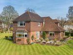 Thumbnail for sale in Bushetts Grove, Merstham, Redhill