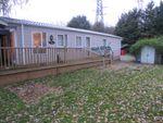 Thumbnail to rent in Crow Lane, Little Billing, Northampton