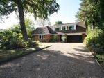 Thumbnail for sale in Longaford Way, Hutton, Brentwood