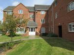 Thumbnail to rent in Firedrake Croft, Stoke, Coventry