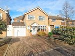 Thumbnail for sale in Proctor Way, Marks Tey, Colchester