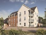 Thumbnail to rent in Maple Road, Shaftesbury