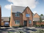 """Thumbnail to rent in """"The Sawley"""" at Oakley Wood Road, Bishops Tachbrook, Leamington Spa"""
