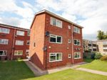 Thumbnail to rent in Belmont Court, Newmarket