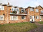 Thumbnail for sale in Uplands Court, Kings Road, Clacton-On-Sea