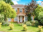 Thumbnail for sale in Ashfield Close, Midhurst, West Sussex, .