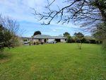 Thumbnail to rent in Halgoss, Tehidy, Camborne