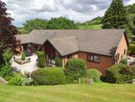 Thumbnail for sale in Sharnbrook, Upper Dolfor Road, Newtown, Powys