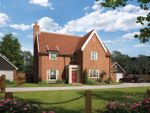 Thumbnail to rent in Ipswich Road, Grundisburgh, Suffolk