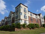Thumbnail for sale in Queen Mary Rise, Sheffield