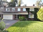 Thumbnail to rent in Birchwood Grove, Twemlows Avenue, Higher Heath, Whitchurch
