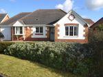 Thumbnail to rent in Maple Grove, Heckington, Sleaford