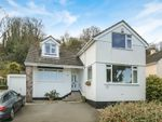 Thumbnail for sale in Brunel Road, Paignton