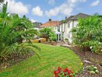 Thumbnail for sale in Mackie Avenue, Brighton, East Sussex