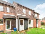 Thumbnail to rent in Japonica Walk, Banbury, Oxfordshire