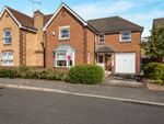 Thumbnail for sale in Yellowhammer Drive, Gateford, Worksop