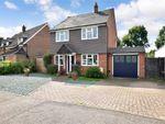 Thumbnail for sale in Lagham Park, South Godstone, Godstone, Surrey