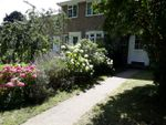 Thumbnail to rent in Clement Court, Maidstone