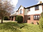 Thumbnail for sale in Cotswold Close, Eastbourne, East Sussex