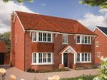 "Thumbnail to rent in ""The Ascot"" at Holden Close, Biddenham, Bedford"