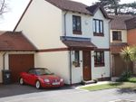Thumbnail for sale in Mulberry Close, Paignton