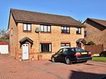 Thumbnail to rent in Renwick Way, Prestwick, South Ayrshire