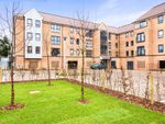 Thumbnail to rent in Marbled White Court, Little Paxton, St. Neots