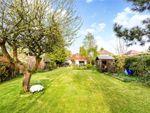 Thumbnail to rent in Hilltop Lane, Chaldon, Surrey