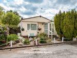Thumbnail to rent in Bungalow Estate, Lady Lane, Longford