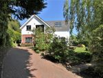 Thumbnail to rent in Monks Lane, Dedham, Colchester, Essex