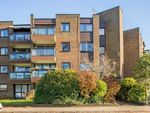 Thumbnail for sale in Oakleigh Court, Oxted, Surrey