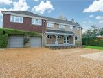 Thumbnail for sale in Crawley Hill, West Wellow, Romsey, Hampshire