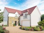 """Thumbnail to rent in """"The Dewar"""" at Jardine Avenue, Falkirk"""