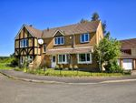 Thumbnail to rent in Wallwern Wood, Chepstow