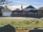 Thumbnail for sale in Woodlawn, Links Road, Amble
