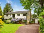 Thumbnail for sale in High Trees Road, Reigate, Surrey