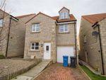Thumbnail to rent in Cherry Tree Drive, Tweedmouth, Berwick-Upon-Tweed