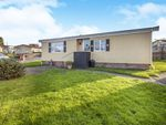 Thumbnail to rent in Kernyk Lowen, North Roskear, Camborne