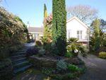 Thumbnail to rent in The Close, Cogos Park, Mylor Bridge, Falmouth