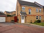 Thumbnail for sale in Paddock Court, Withernsea