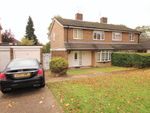 Thumbnail to rent in Crofts Path, Hemel Hempstead