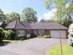 Thumbnail to rent in Woodside, Off Streetly Lane, Four Oaks, Sutton Coldfield