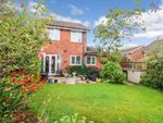 Thumbnail to rent in Wynstay Court, Clayton, Newcastle-Under-Lyme