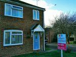 Thumbnail for sale in Allfields, Dovercourt, Harwich