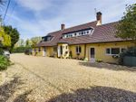 Thumbnail to rent in Roxton Road, Great Barford, Bedford