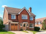 Thumbnail for sale in Goldfinch Gardens, Guildford, Surrey