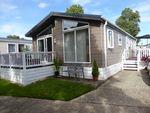 Thumbnail to rent in New Beach Park, Hythe Road, Dymchurch, Romnet Marsh, Kent