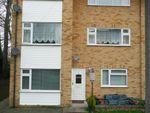 Thumbnail to rent in Sundew Grove, Ramsgate
