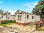 Thumbnail to rent in Bridge Road, Potter Heigham, Great Yarmouth